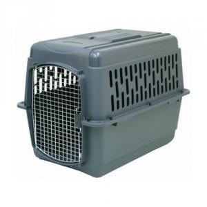 safe kennel